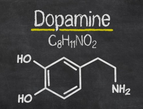 What's Dopamine Got To Do With It?
